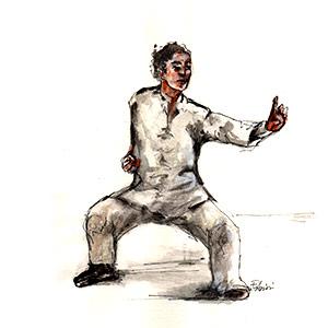 Kung Fu stile Pak Hok Pai