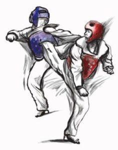 Taekwondo/Hapkido